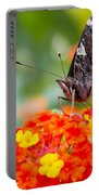Butterfly Hanging Out On Wildflowers Portable Battery Charger
