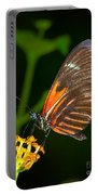 Butterfly On Orange Bloom Portable Battery Charger