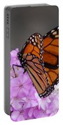 Butterfly On Phlox Portable Battery Charger