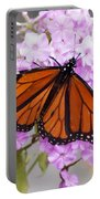 Butterfly On Pink Phlox Portable Battery Charger