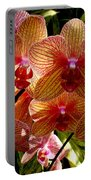Butterfly Orchids Portable Battery Charger