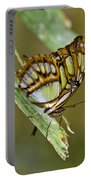 Butterfly Siproeta Stelenes Portable Battery Charger