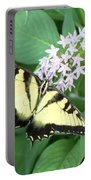 Butterfly - Swallowtail Portable Battery Charger