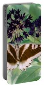Butterfly - Swallowtail - Photopower 141 Portable Battery Charger