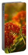 Butterfly Weed In The Sunset Portable Battery Charger