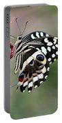 Butterly Portable Battery Charger