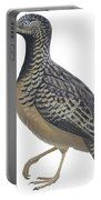 Button Quail Portable Battery Charger by Anonymous