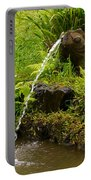 Byodo In Temple Portable Battery Charger