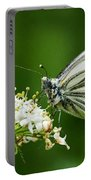 Cabbage Butterfly Portable Battery Charger