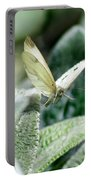 Cabbage White Butterfly In Flight Portable Battery Charger