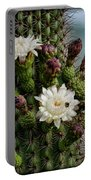 Cacti Bouquet  Portable Battery Charger