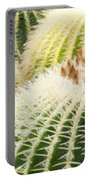 Cacti Portable Battery Charger