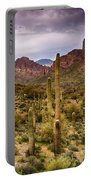 Cactus Canyon  Portable Battery Charger