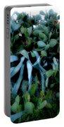 Cactus Family Almeria Region Spain 2013 January Portable Battery Charger