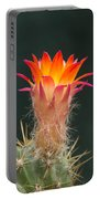 Cactus Flower Portable Battery Charger