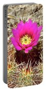 Cactus Flower Palm Springs Portable Battery Charger