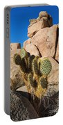 Cactus In Hidden Valley Portable Battery Charger