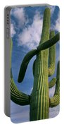 Cactus In The Clouds Portable Battery Charger