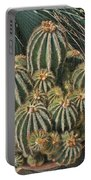 Cactus In The Garden Portable Battery Charger