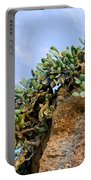 Cactus On A Cliff Portable Battery Charger