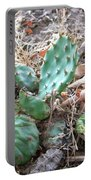Cactus Pile Portable Battery Charger