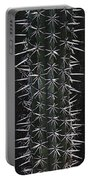 Cactus Spines Portable Battery Charger