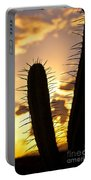 Cactus Sunset Portable Battery Charger