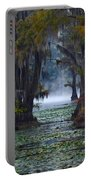 Caddo Lake Morning Portable Battery Charger