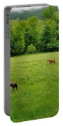 Cades Cove Horses Portable Battery Charger