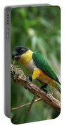 Caique A Tete Noire Pionites Portable Battery Charger
