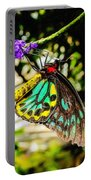 Cairns Birdwing Portable Battery Charger