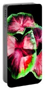 Caladium Portable Battery Charger