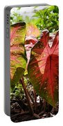 Caladiums Portable Battery Charger