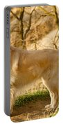 Cali Gold Portable Battery Charger by Bill Gallagher