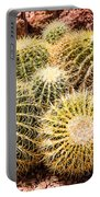California Barrel Cactus Portable Battery Charger