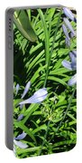 California Beauty Portable Battery Charger