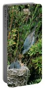 California Gnatcatcher Feeding Chicks Portable Battery Charger