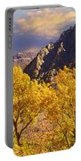 California Gold Portable Battery Charger