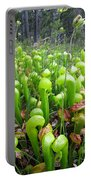 California Pitcher Plant Portable Battery Charger