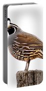 California Quail Portable Battery Charger by Robert Bales