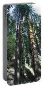 California Redwood Portable Battery Charger