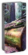 California Redwoods 2 Portable Battery Charger