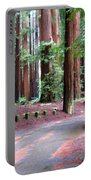 California Redwoods 3 Portable Battery Charger