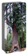 California Redwoods 6 Portable Battery Charger