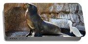 California Sea Lion Portable Battery Charger