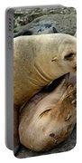 California Sea Lions Portable Battery Charger
