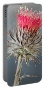 California Thistle Portable Battery Charger