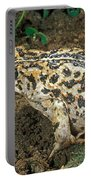 California Toad Bufo Boreas Halophilus Portable Battery Charger