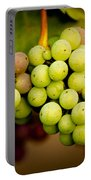 California Winery Grapes Portable Battery Charger