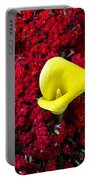 Calla Lily In Red Kalanchoe Portable Battery Charger
